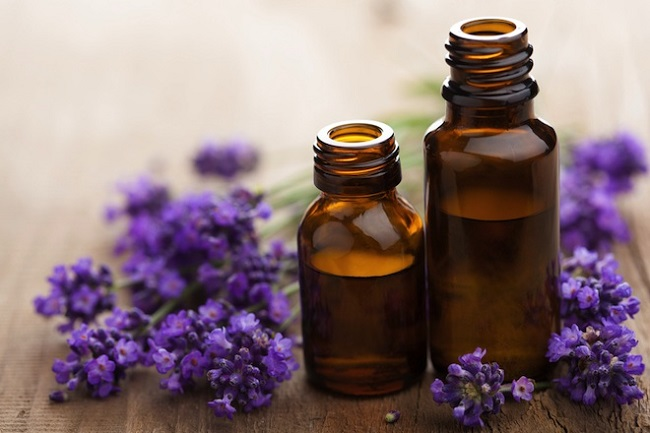Global Lavender Essential Oil Extract Market