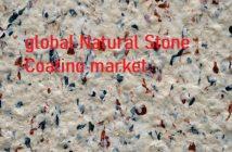 Natural-Stone-Coating-Market