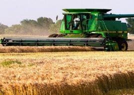 Growth in Insights of Grain Farming Global Market Outlook: Ken Research