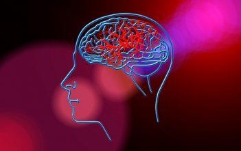Global Neurology Devices Market