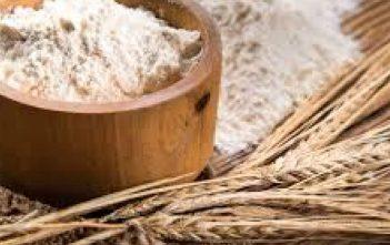 flour-rice-malt-manufacturing-market