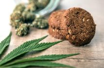 Global Cannabis Food and Beverage Market