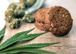 Effective Growth in Landscape of Cannabis Food and Beverages Market Outlook: Ken Research