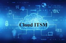 Global Cloud ITSM Market