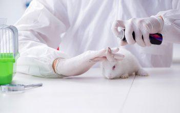 Global Animal Testing And Non-Animal Alternative Testing Market
