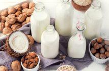Global Dairy Alternatives Market