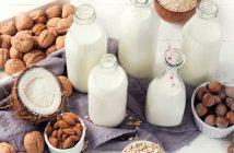 Global Dairy Based Beverages Market