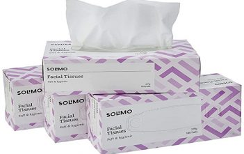 Global Facial Tissues Market