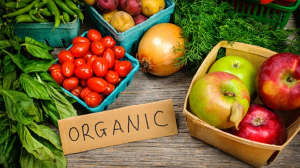 Global Organic Vegetable Farming Market