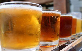 Global Beer Industry