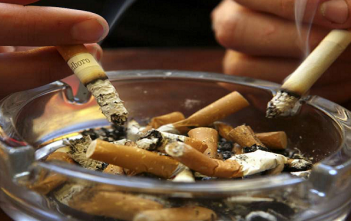 Canada Tobacco Industry