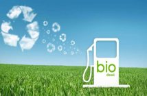 Global Pure Biodiesel Market Research Report