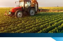 South Africa Crop Protection Market.