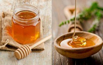 Egypt Honey Market