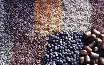 Global Aquafeed market Research Report