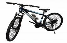 Global Bicycle Market Research Report