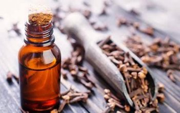 Global Clove Essential Oil Market