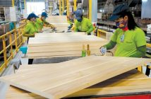 Vietnam Wood Industry