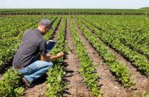 Global Agricultural Testing Market