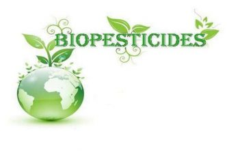 Global Biopesticides Market