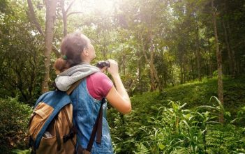 Global Ecotourism Market