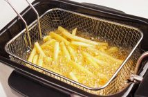 Global Potato Fryers Market