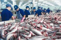 Global Processed Seafood and Seafood Processing Equipment Market
