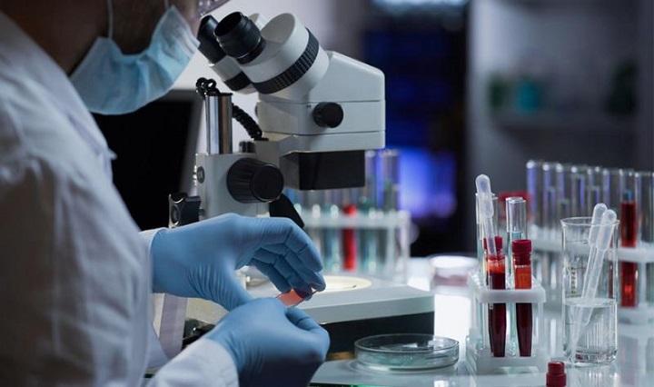 Global Syphilis Immunoassay Diagnostics Market