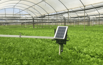 Global Smart Greenhouse Market