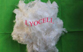 Lyocell Fiber Market