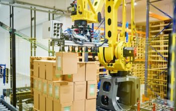 Asia Pacific Robotic Palletizers Market