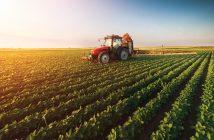 Ethiopia Agriculture Market