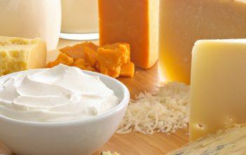 Global Dairy Ingredients Market