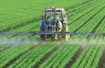 Global Water-Soluble Fertilizers Market