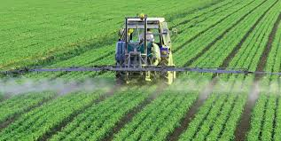 Global Water-Soluble Fertilizers Market