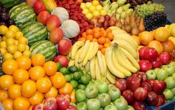 Global Fruit and Vegetable Ingredients market