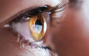 Global Eye Socket Implant Market